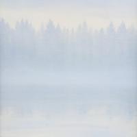 SILVER LAKE I
